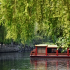 Spring scenery along moat in Jinan, east China